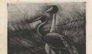 Arame Farpado – 1979